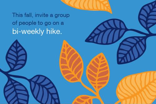 This fall, invite a group of people to go on a bi-weekly hike.